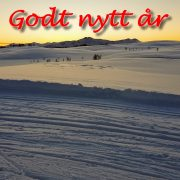 GodtNyttAr2